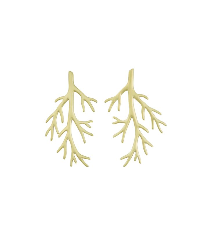 Branch Earrings Matt Gold