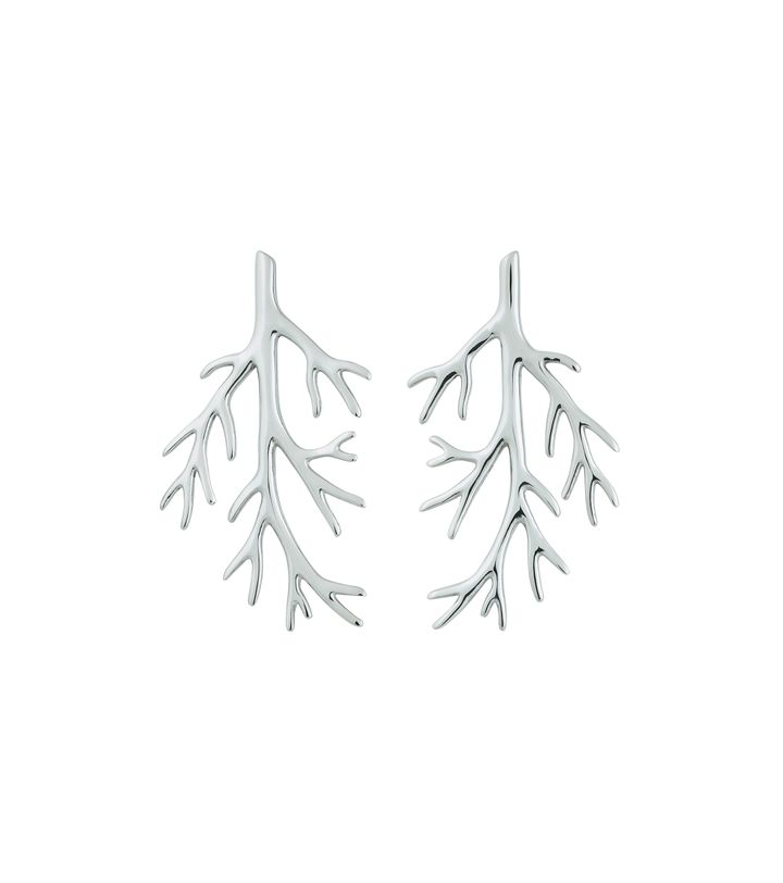 Branch Earrings Steel
