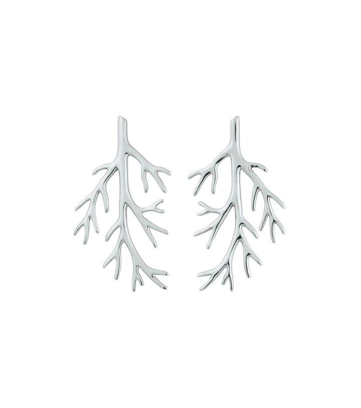 Branch Earrings Steel