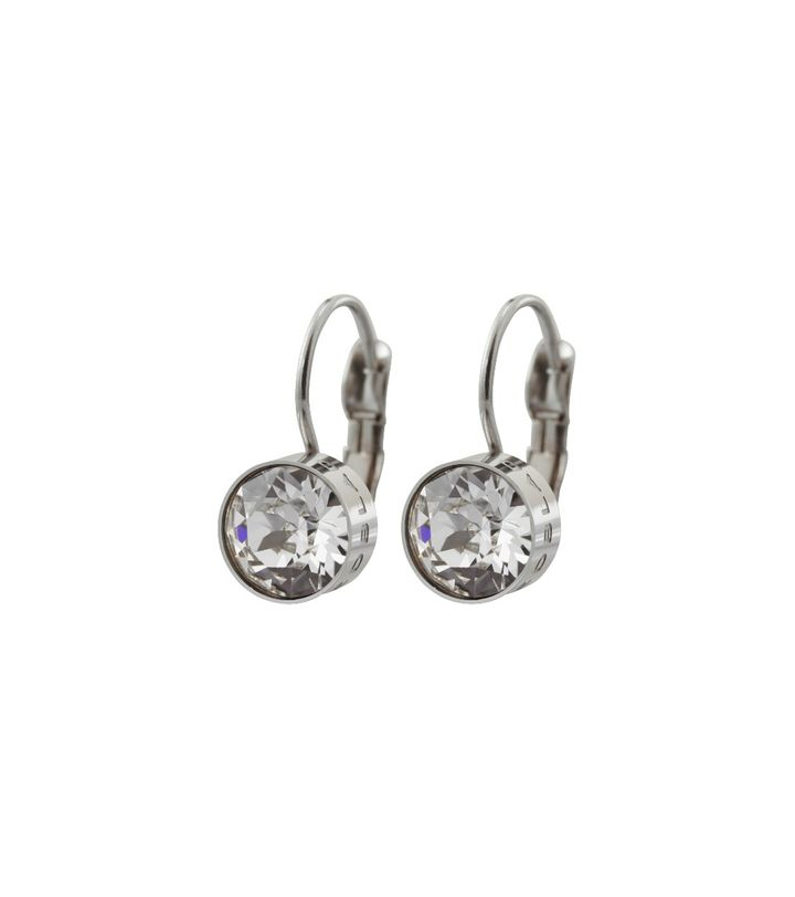 Diana Earrings Clear Crystal Steel