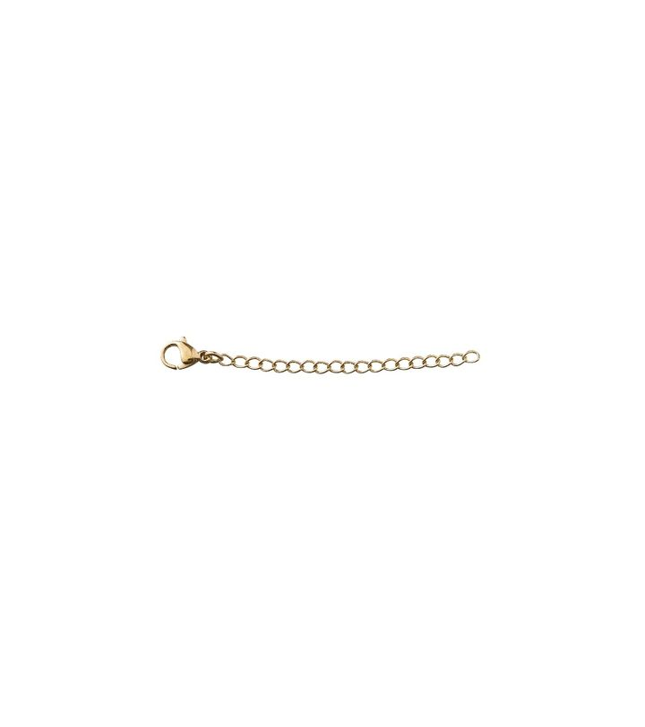 Extended Chain 5 cm Small Gold