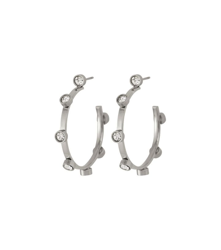 Tina Earrings Small Steel
